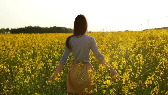 Cover Image for Beautiful Girl Walks Through Field At Sunset