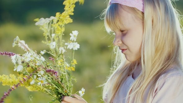Thumbnail for A Blonde Girl Collecting Bunch Of Daisies And Wildflowers