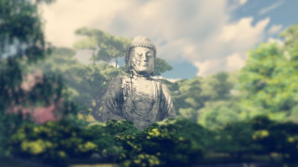 Thumbnail for The Buddha Garden