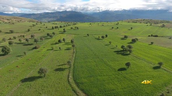 Aerial Plateau