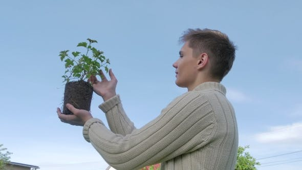 Thumbnail for Young Guy Taking Care About Plant