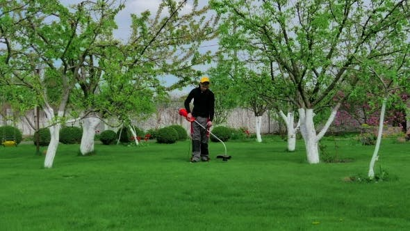Thumbnail for Man Trimming Grass In The Garden Using Mower