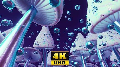 Mushroom Fantasy 4K