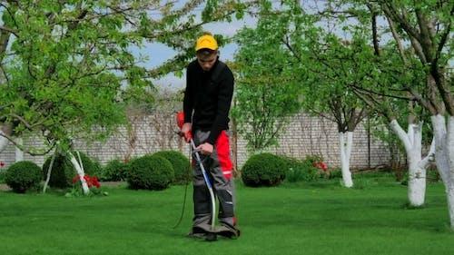 Gardener Cutting Grass With Trimmer