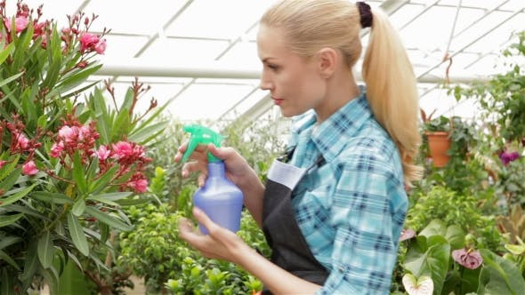 Thumbnail for Female Florist Sprays Water on Plants at the Garden Centre