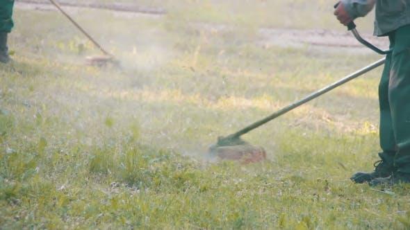 Thumbnail for Gardener Mows The Lawn Mower Green Grass