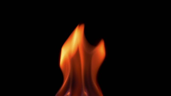 Thumbnail for Natural Burning Fire Flame On The Black Background
