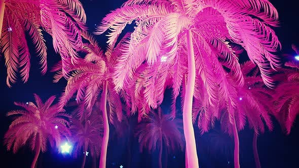 Thumbnail for Pink Plastic Palm Trees Alley