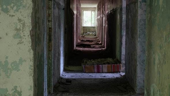 Corridor in the Abandoned House