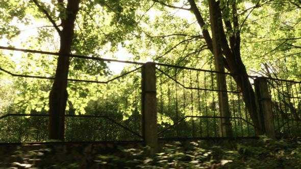 Thumbnail for Metal Fence along the Road