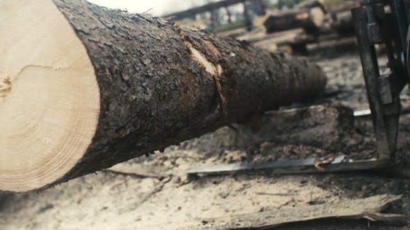 Thumbnail for Large Log Loader