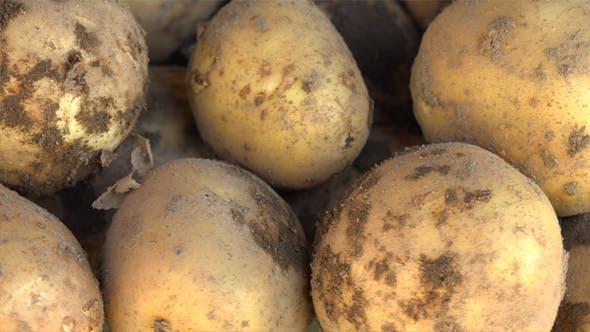 Thumbnail for Potatoes