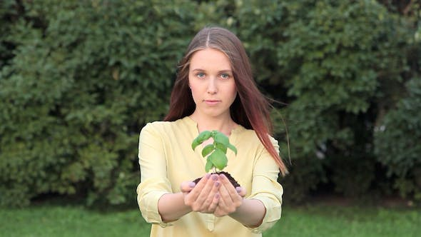 Thumbnail for Young Woman Giving Green Young Plant In Hands