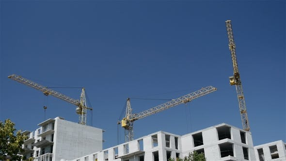 Cover Image for Working Construction Cranes.