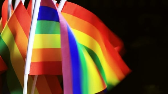 Thumbnail for LGBT Community Rainbow Small Flags In The Wind