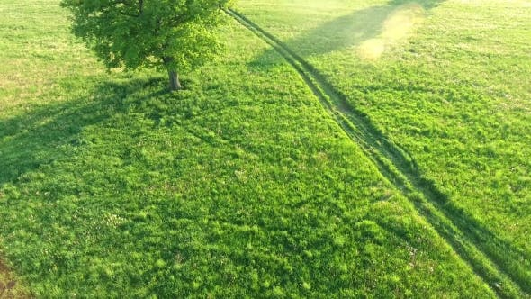 Thumbnail for Aerial View Of Suv Car Moving On Road In Green Fields