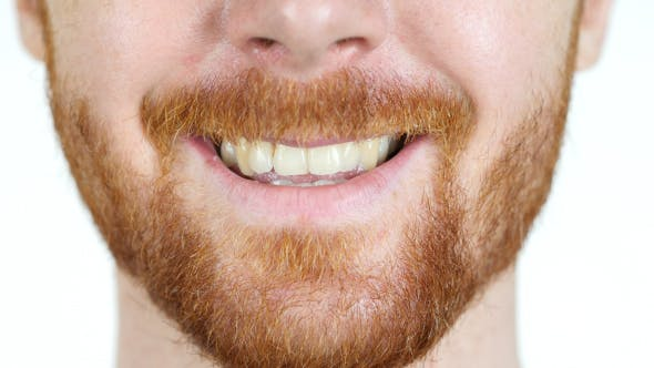 Cover Image for Close up of Smiling Man w/ Red Hairs and Beard