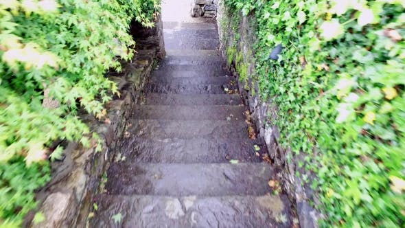 Thumbnail for Steps Of Stairs Moving Downstairs 5