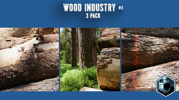 Thumbnail for Wood Industry 3