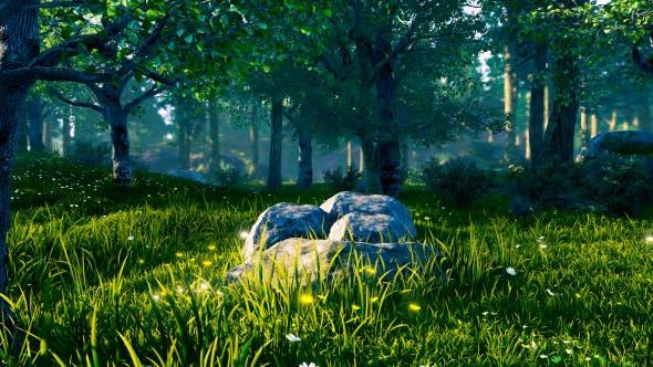 Thumbnail for Panorama Wald 360