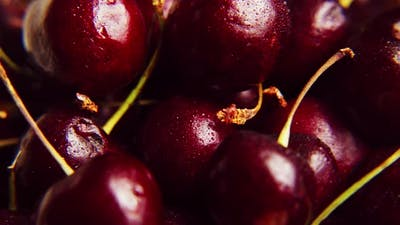 Fresh Juicy Wet Red Cherry Rotation