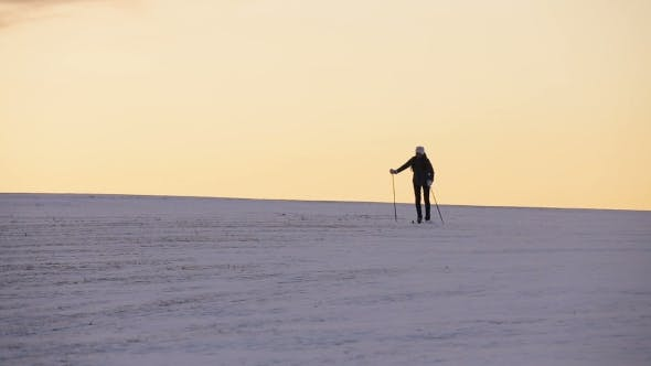 Thumbnail for Cross-country Skiing On Field.
