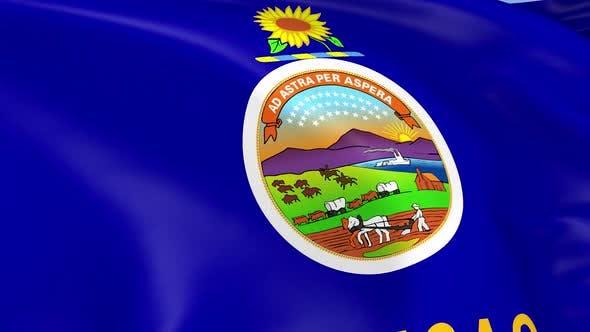 Thumbnail for Kansas State Flag