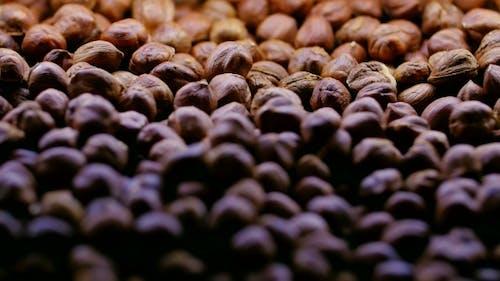 Background Of The Hazelnut