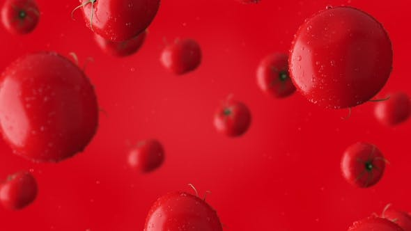 Thumbnail for Super  Clip Of Falling Red Tomatoes And Water Drops Against Red Background