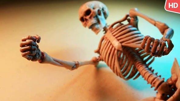 Thumbnail for Human Skeleton