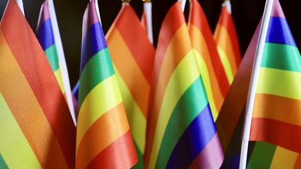Thumbnail for LGBT Rainbow Small Flags