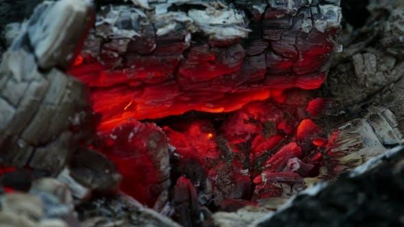 Thumbnail for Coals