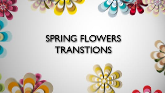 Thumbnail for Spring Flowers Transitions