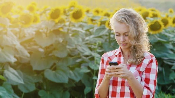 Thumbnail for Rural Woman Typing Text On Your Phone. Against The Backdrop Of a Field Of Sunflowers
