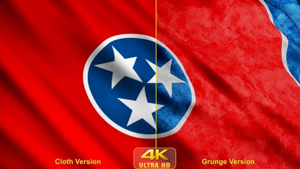 Thumbnail for Tennessee State Flags