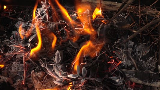 Thumbnail for Barbecue Coal Fire 5