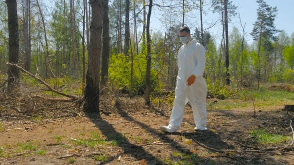 Cover Image for A Guy In a Special Suit Removes Trash In Forest
