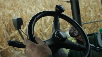 In The Cab Of Combine Harvester Gathering Corn