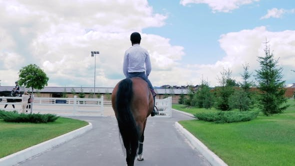 Thumbnail for A Guy Rides On a Horse To The Arena
