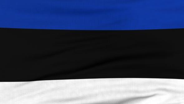 Thumbnail for Nationalflagge Estlands Fliegen auf dem Wind