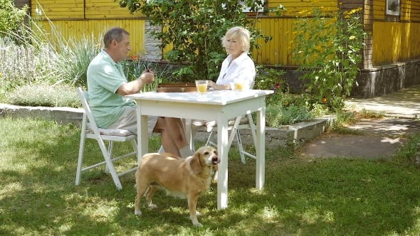 Elderly Couple Playing a Board Game In The Garden.
