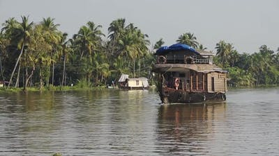 Houseboats floating on a river surrounded by palm trees, Kerala Backwaters, India