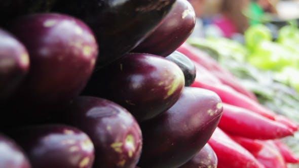 Thumbnail for Showcase Vegetables