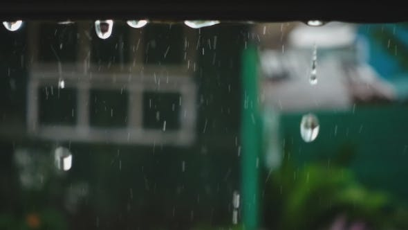 Thumbnail for Rain Drops From Awning