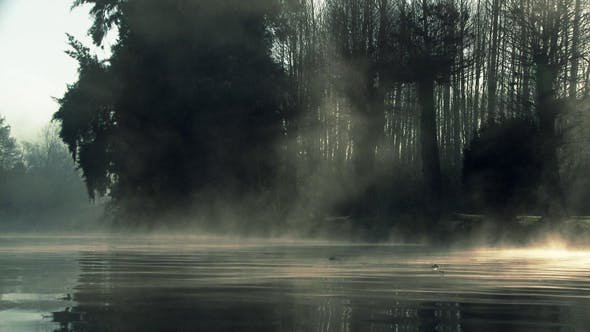 Thumbnail for Foggy River at Dawn.