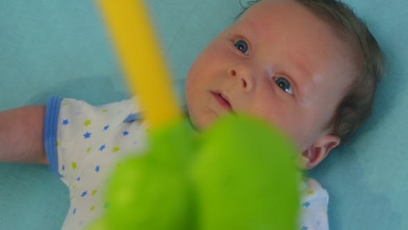 Thumbnail for Newborn Looking At Colorful Baby Toy