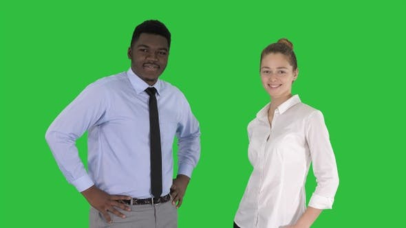 Cover Image for Successful businesspeople business team posing on a Green
