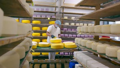 Cheese Production. The Worker Covers the Cheese with Wax. Cheese Factory