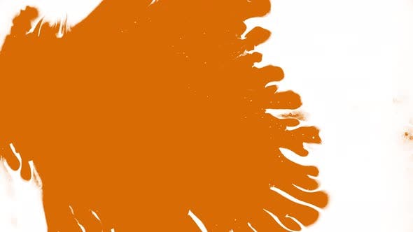 Orange Color Drops