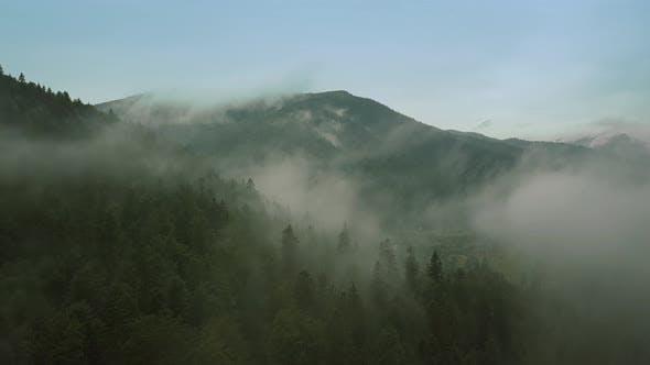 Thumbnail for Mystischer und nebliger Drohne flug über den Regenwald in Mountain. Mittlerer Schuss